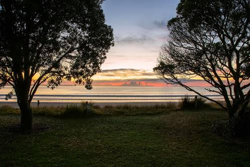 AusAPT New Zealand